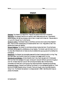 Cheetah - Review Article Questions Vocabulary Word Search