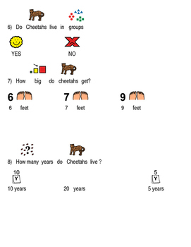 Cheetah - picture supported text review article questions facts information