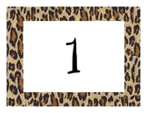 Cheetah/Jungle/Safari Calendar Numbers
