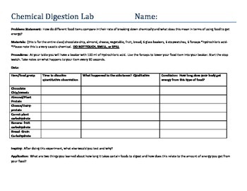 Chemical Digestion Lab