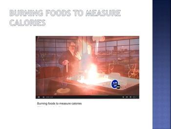 Chemical Energy plus Food in Energy Bundle - Worksheets, powerpoints
