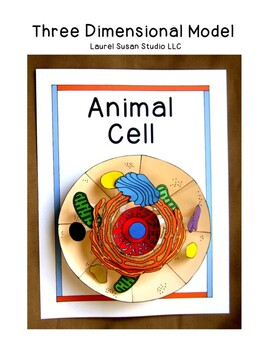Biology animal cell model 3 dimensional project organelles nucleus ccuart Choice Image