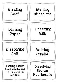 Chemical/Physical Change Sorting Activity