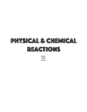Chemical & Physical Reactions Lab Stations