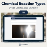 Chemical Reaction Types Lab Stations - Print, Digital / Vi