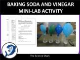 Chemical Reactions - Baking Soda and Vinegar
