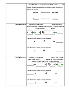 Chemical Reactions and Enzyme Fill in the Blank notes