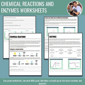 Chemical Reactions and Enzymes Worksheet Bundle