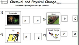 Chemistry: Chemical and Physical Changes Adapted for Students with Special Needs