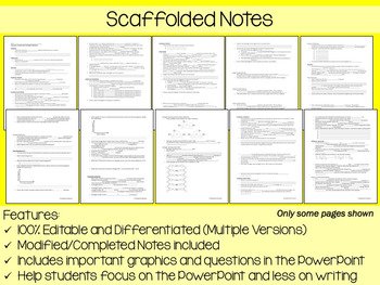 Chemistry PowerPoint, Notes & Exam