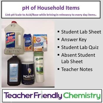 Chemistry Lab: Litmus and pH Testing of Household Items
