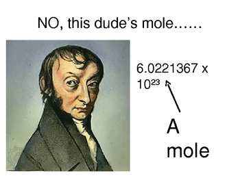 Chemistry PowerPoint- the mole