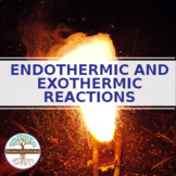 ENDOTHERMIC AND EXOTHERMIC REACTIONS - Distance Learning