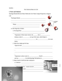 Chemistry of Life Note and Test Bundle