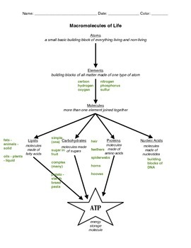 Chemistry of Life Concept Map