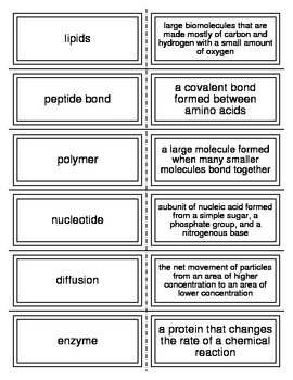 Chemistry of Life Flash Cards for Biology I