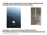 Marine Chemistry of Water - Ocean Unit 4 Bundled