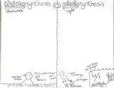 Chemosynthesis vs Photosynthesis Doodle Notes