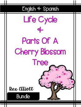 Cherry Blossom Label & Life Cycle- Bilingual