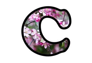 Cherry Blossoms Bulletin Board Letters, Numbers and Symbols, Spring Decor