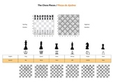 Chess Poster - Set up and Piece movement