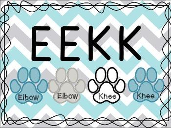 Chevron Dog Paw-Print Daily 5 Pack
