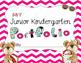 Chevron Junior Kindergarten Bear Portfolio