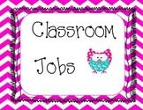 Chevron Owl Classroom Job