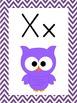 Chevron Owl Theme