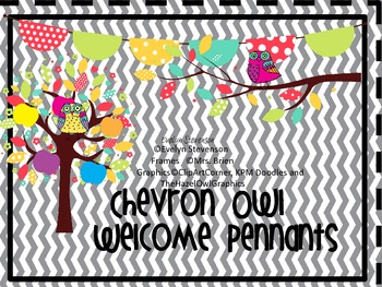 Chevron Owl Welcome Pennants
