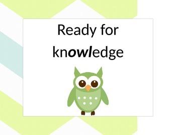 Chevron Owl theme behavior chart *editable