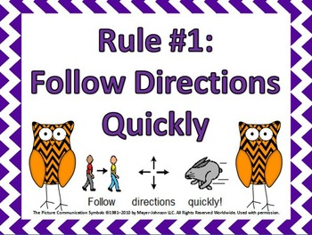 Chevron Owls Whole Brain Teaching Rules Posters with Visuals