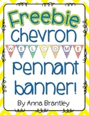 Chevron Welcome Pennant Banner {Freebie}