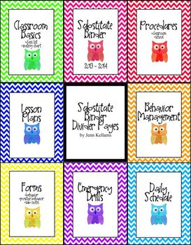 Chevron and Owl Substitute Binder