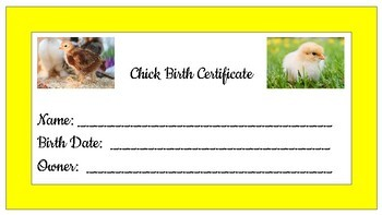 Chick Birth Certificate