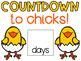 Hatching Chicks Countdown