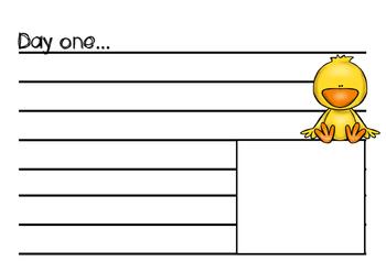 Chick Diary - Farm Unit