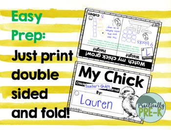 Chick Hatching Lab Observational Journal