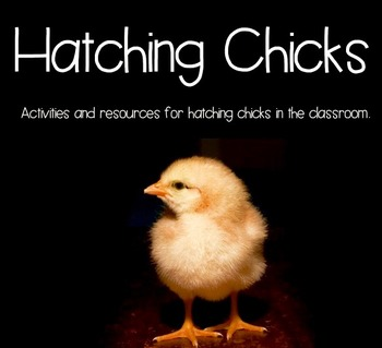 Chick Hatching Resource and Activity Packet