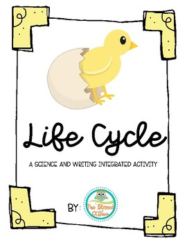 Chick Life Cycle!
