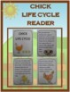 Chick Life Cycle Activities