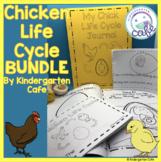 Chick Life Cycle BUNDLE!