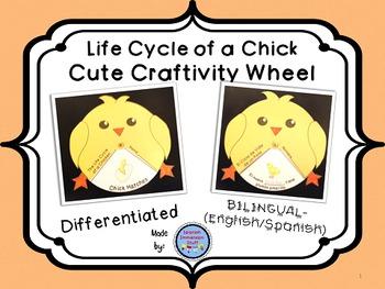 Chick Life Cycle Wheel Craftivity {BILINGUAL - SUPER CUTE!}