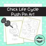Chick Life Cycle Push Pin Art