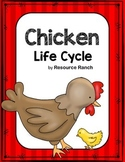 Chicken Life Cycle Guided Reading