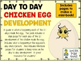 Chicken Egg Day to Day Development Slides and Mini-Notebook Pack