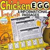 Chicken Egg Incubation Timeline & Passages   Chicken Life Cycle