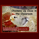 Chicken Eggs Hatching in a Classroom - Posters with Microscope Images