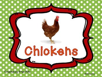 Chicken Facts Power Point
