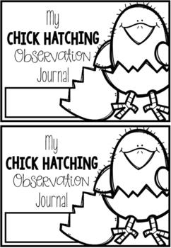 Chicken Hatching Activities & Worksheets | Teachers Pay Teachers